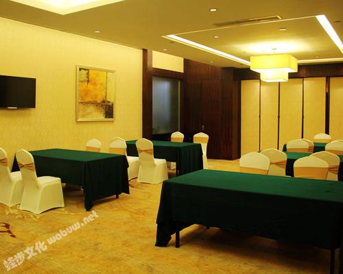 成都泰合索菲特大饭店-会议室6