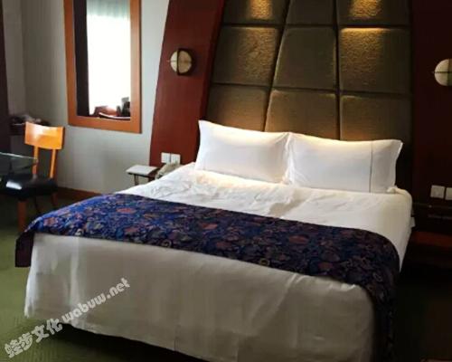 成都西藏饭店-大床